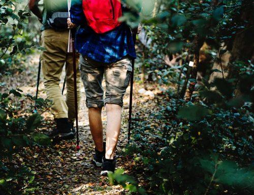 """""""Wanderge(h)nuss Bayerischer Wald"""""""