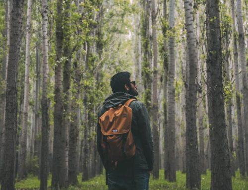 Wandern